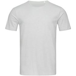 Abbigliamento Uomo T-shirt maniche corte Stedman Stars Shawn Grigio chiaro