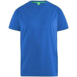 Abbigliamento Uomo T-shirt maniche corte Duke  Blu