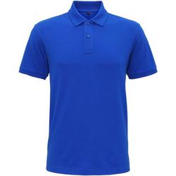 Abbigliamento Uomo Polo maniche corte Asquith & Fox AQ005 Blu reale acceso