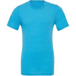 Abbigliamento Uomo T-shirt maniche corte Bella + Canvas CA3413 Acqua