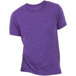 Abbigliamento Uomo T-shirt maniche corte Bella + Canvas CA3413 Viola