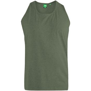 Abbigliamento Uomo Top / T-shirt senza maniche Duke  Polvere