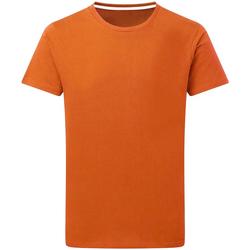 Abbigliamento Uomo T-shirt maniche corte Sg Perfect Arancio