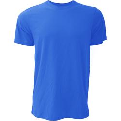 Abbigliamento Uomo T-shirt maniche corte Bella + Canvas CA3001 Reale Vero