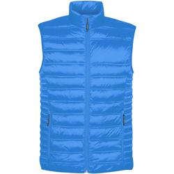 Abbigliamento Uomo Gilet / Cardigan Stormtech ST158 Blu elettrico