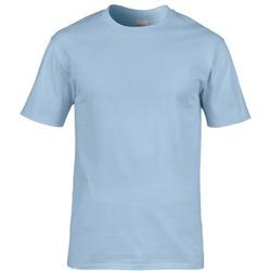 Abbigliamento Uomo T-shirt maniche corte Gildan 4100 Azzurro