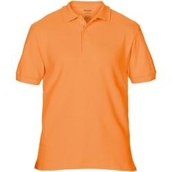 Abbigliamento Uomo Polo maniche corte Gildan Premium Mandarino