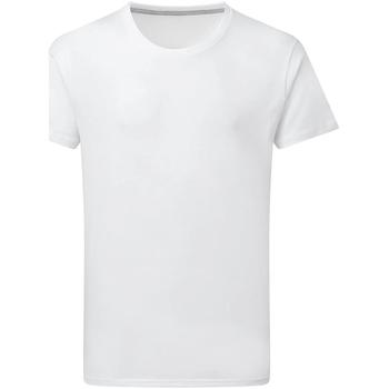 Abbigliamento Uomo T-shirt maniche corte Sg Perfect Bianco