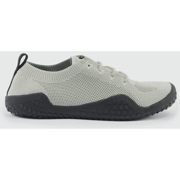 Abbigliamento Uomo Polo maniche corte Crosshatch 75 Grigio