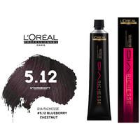 Bellezza Donna Eau de parfum L´oreal shampoo giorno Richesse - 5.12 - Castaño Claro Ceniza Irizado hair color day Richesse - 5.12 - Castaño Claro Ceniza Irizado