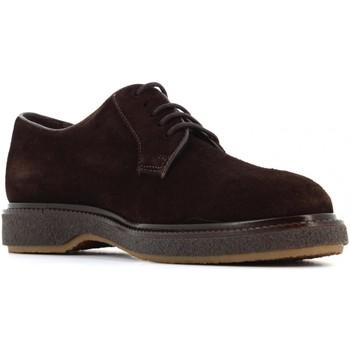 Scarpe Uomo Derby Soldini STONE HAVEN scarpe uomo stringate 20266-W-V27 VELOUR T.DI MORO Pelle
