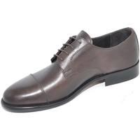 Scarpe Uomo Derby & Richelieu Malu Shoes Scarpe uomo stringate vera pelle crust marrone mezza punta spaz MARRONE