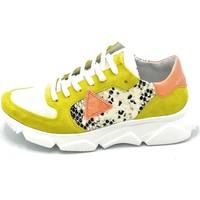 Scarpe Donna Sneakers basse Dreamer C5550C1 Giallo-arancio