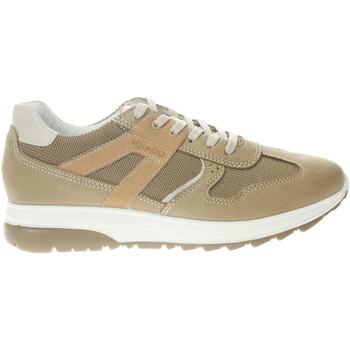 Scarpe Uomo Sneakers Igi&co 5129633-UNICA - Sneaker in cam  Beige