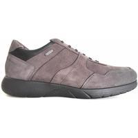 Scarpe Uomo Sneakers Stonefly ATRMPN-17950 Grigio