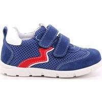 Scarpe Bambino Sneakers basse Balocchi 269 - 103157 Azzurro