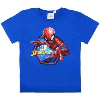 Abbigliamento Bambino T-shirt maniche corte Spiderman T-Shirt Multicolore