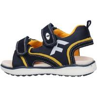 Scarpe Bambino Sandali Falcotto - Sandalo blu/giallo ATALYN-1C67 BLU