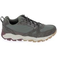 Scarpe Sneakers basse Columbia Ivo Trail Kaki Grigio