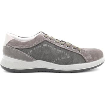 Scarpe IgI CO  scarpe uomo sneakers 5118700  colore Altri