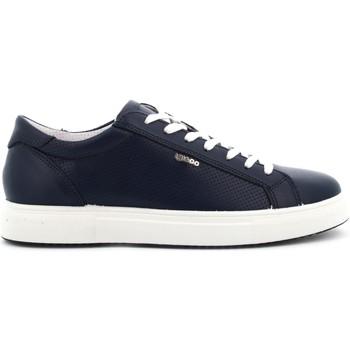 Scarpe IgI CO  scarpe uomo sneakers 5138711  colore Altri