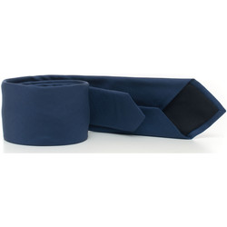 Abbigliamento Uomo Cravatte e accessori Hugo Boss TIE6-50429626473 bluette
