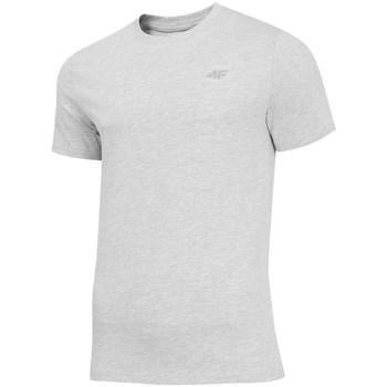 Abbigliamento Uomo T-shirt maniche corte 4F TSM003 Grigio