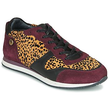 Scarpe Donna Sneakers basse Pataugas IDOL/I F4E Bordeaux / Leopard