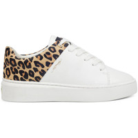 Scarpe Donna Sneakers basse Ed Hardy - Wild low top white leopard Bianco