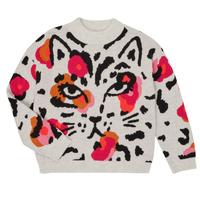 Abbigliamento Bambina Maglioni Catimini CR18035-11 Multicolore