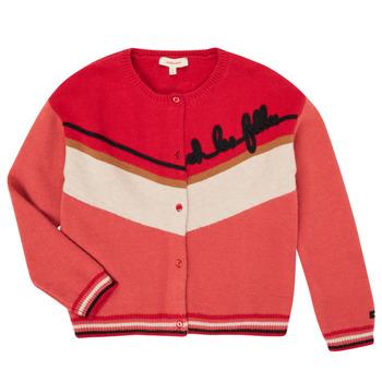 Abbigliamento Bambina Gilet / Cardigan Catimini CR18015-67-C Multicolore