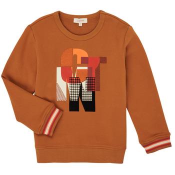 Abbigliamento Bambino Felpe Catimini CR15024-63-C Marrone