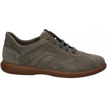 Scarpe Uomo Sneakers basse Frau SUEDE roccia
