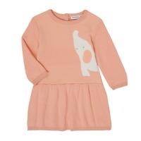 Abbigliamento Bambina Abiti corti Noukie's Z050082 Rosa