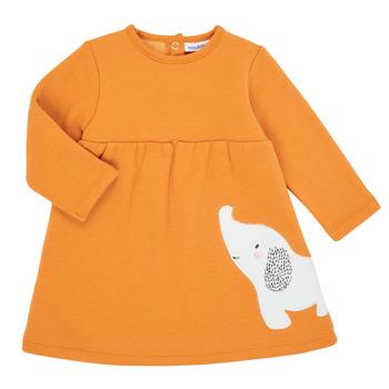 Abbigliamento Bambina Abiti corti Noukie's Z050083 Arancio