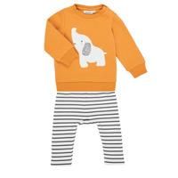 Abbigliamento Bambina Completo Noukie's Z051372 Multicolore