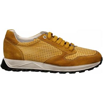 Scarpe Uomo Sneakers basse Exton ANT ocra