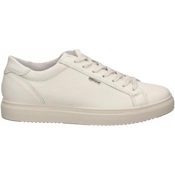 Scarpe Uomo Sneakers basse IgI&CO USH 51387 bianco