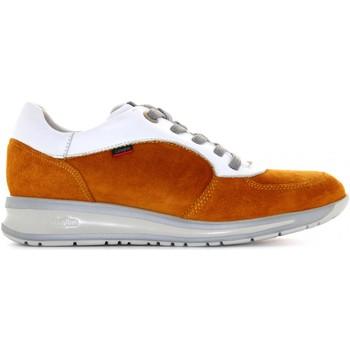 Scarpe Donna Sneakers basse CallagHan scarpe donna sneakers basse 87134 SENAPE Senape