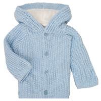 Abbigliamento Bambino Cappotti Carrément Beau Y96053 Blu