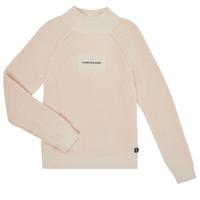 Abbigliamento Bambina Maglioni Calvin Klein Jeans IG0IG00680-PGB Grigio