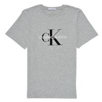 Abbigliamento Unisex bambino T-shirt maniche corte Calvin Klein Jeans MONOGRAM Grigio