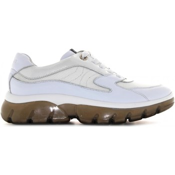 Scarpe Donna Sneakers basse CallagHan scarpe donna sneakers basse 44200 BIANCO Bianco