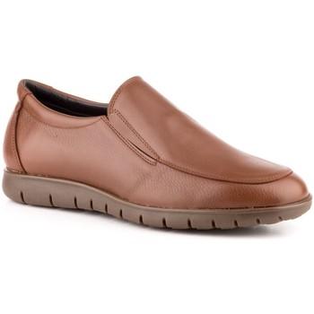 Scarpe Uomo Mocassini Carlo Garelli Shoes  Marron