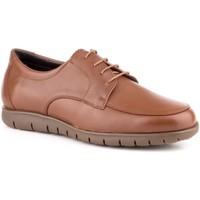 Scarpe Uomo Derby Carlo Garelli Shoes  Marron