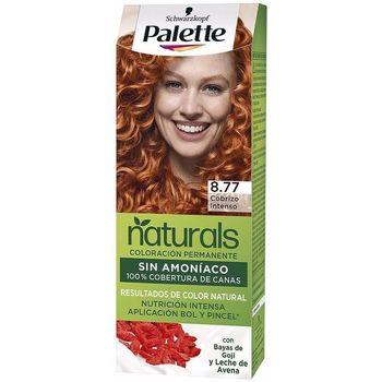 Bellezza Donna Tinta Palette Natural Tinte 8.77-cobrizo Intenso