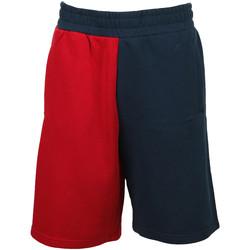 Abbigliamento Bambino Shorts / Bermuda Fila Tave Shorts Kids Blu