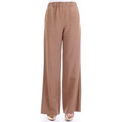 Abbigliamento Donna Pantaloni morbidi / Pantaloni alla zuava Lanacaprina PF2303 Terra