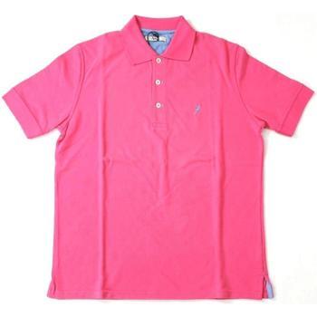 Abbigliamento Uomo Polo maniche corte Ingram ATRMPN-20218 Rosa
