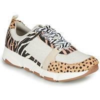 Scarpe Donna Sneakers basse Gioseppo CREAZZO Leopard